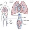 Что нужно знать о тромбоэмболии легочной артерии?